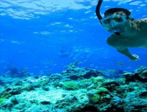 Liburan dengan Damai dan Menakjubkan di Pulau Harapan