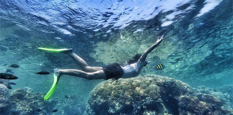 snorkling wisata pulau harapan